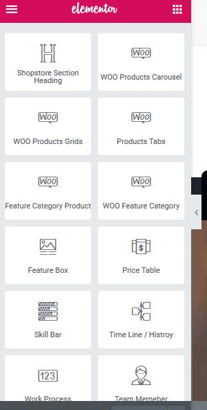 best ecommerce for wordpress theme.