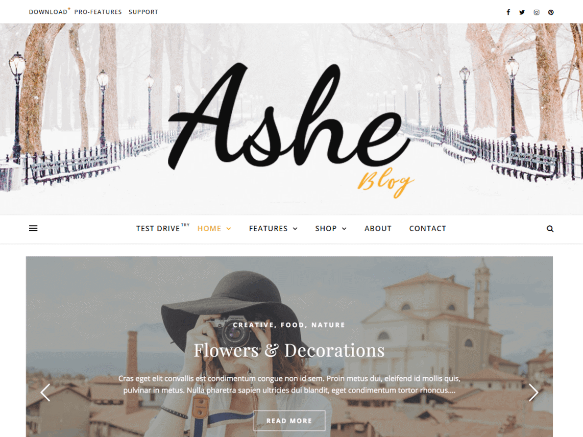 preview screenshot of Ashe WordPress theme