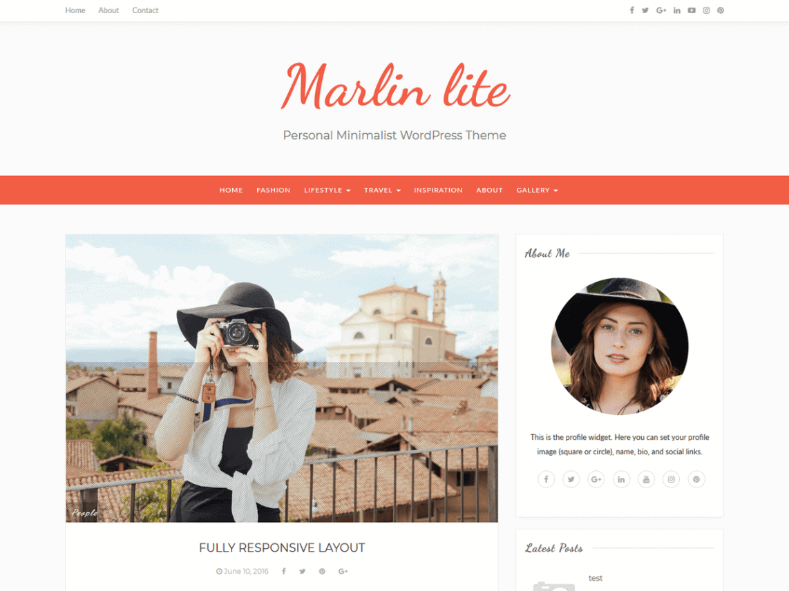 preview screenshot of Marlin lite WordPress blog theme