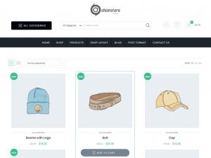 20+ Most expensive WordPress eCommerce themes free download