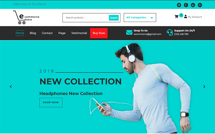 Ecommerce Hub WordPress Theme