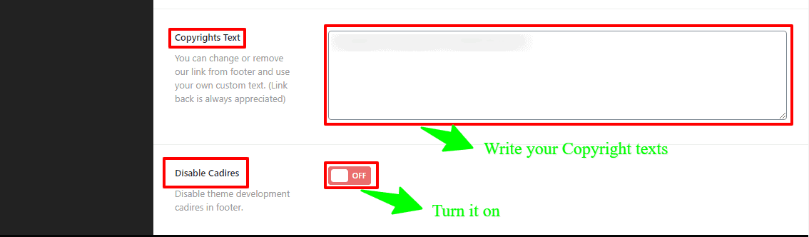 casion wordpress theme general settings