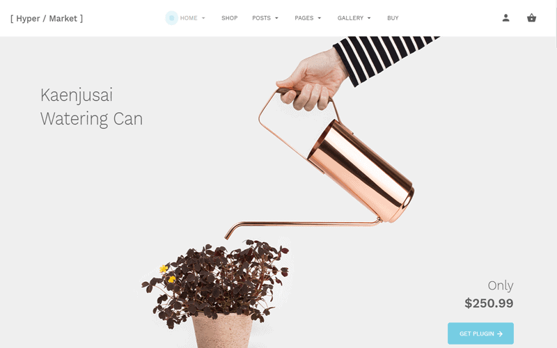 Screenshots for the WordPress Store theme called Hypermarket Plus