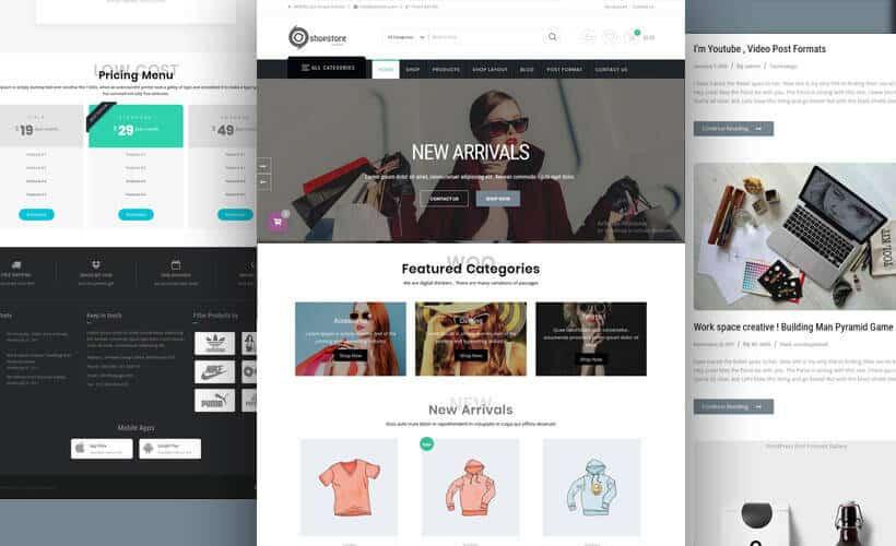 ShopStore :- WordPress / WooCommerce Store Theme