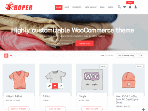 Shoper/ WordPress shop theme free